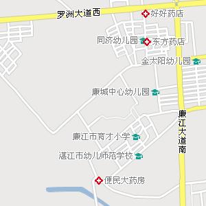 廉江市区电子地图,廉江市区地图