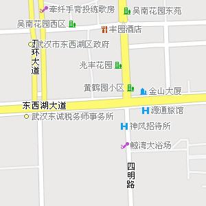 武汉电子地图图片