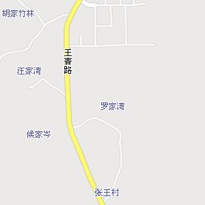 武汉市青山区武东街道地图图片