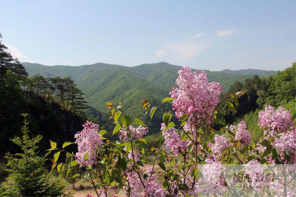 延边朝鲜族自治州旅游景点地图