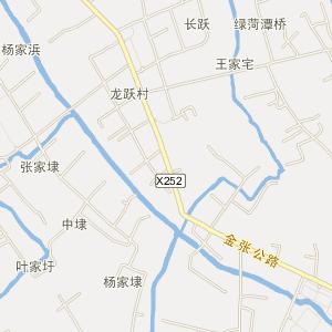 上海电子地图 金山电子地图