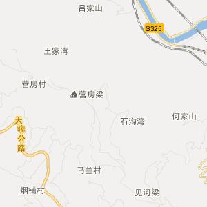 大武山新木姜子