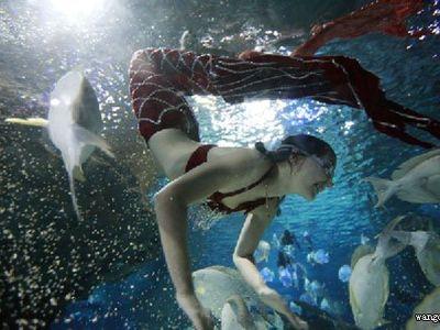 新西兰富国海底世界