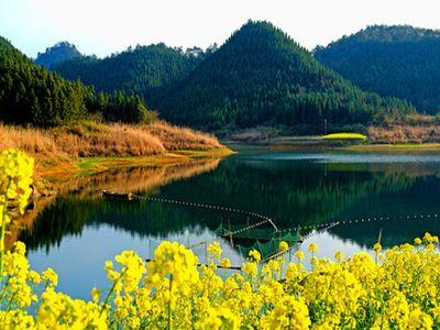 从千岛湖镇过千岛湖大桥(千汾线),抵达西南旅游码头(姜家镇),即可到达