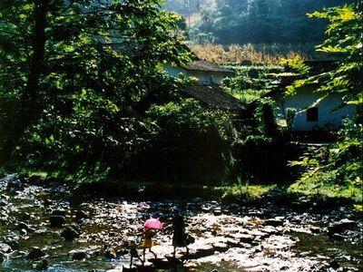 【三峡竹海生态风景区】三峡竹海生态风景区电话